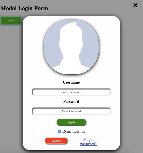 Modal Login Form Application