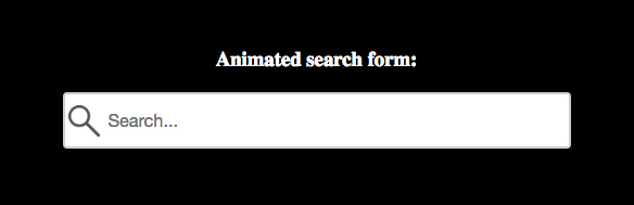 Animated Search Form